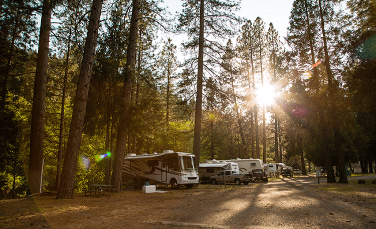 #5 Yosemite Pines RV Park: Yosemite, California